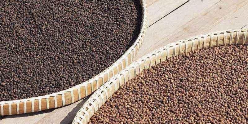 Piperin: Inhaltsstoff im Pfeffer